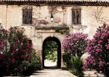 jardinier paysagiste Gemenos 13420